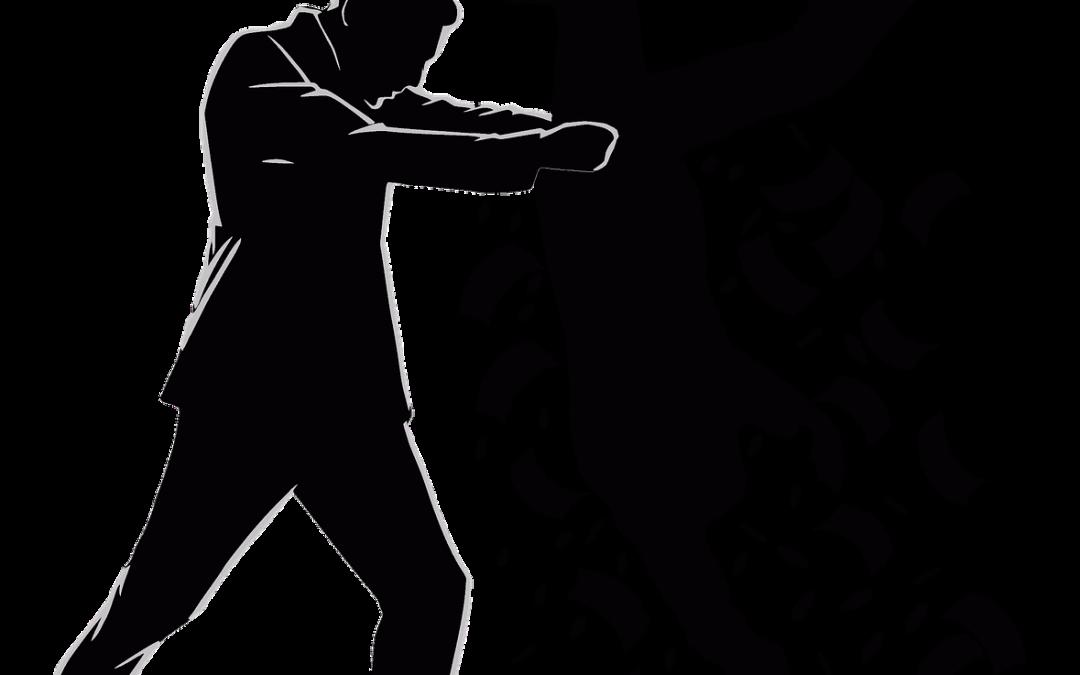 Hoe kan ik minder belasting betalen aan de fiscus – eenmanszaak deel 1